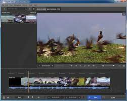 SolveigMM Video Splitter Crack 7.6.210 + Free Download 2021